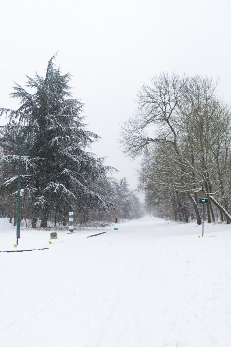 Vincennes sous la neige