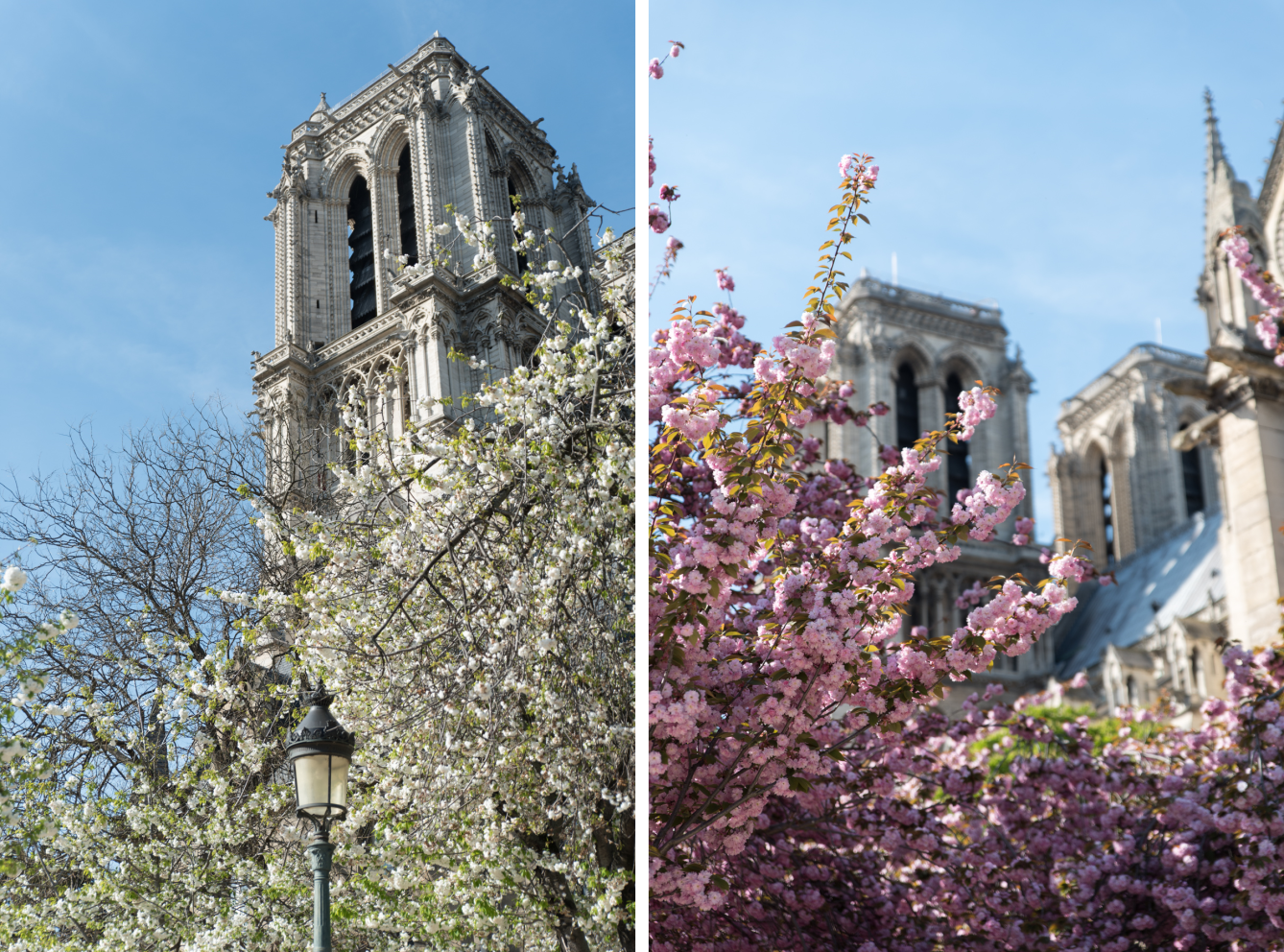 Le printemps à Paris